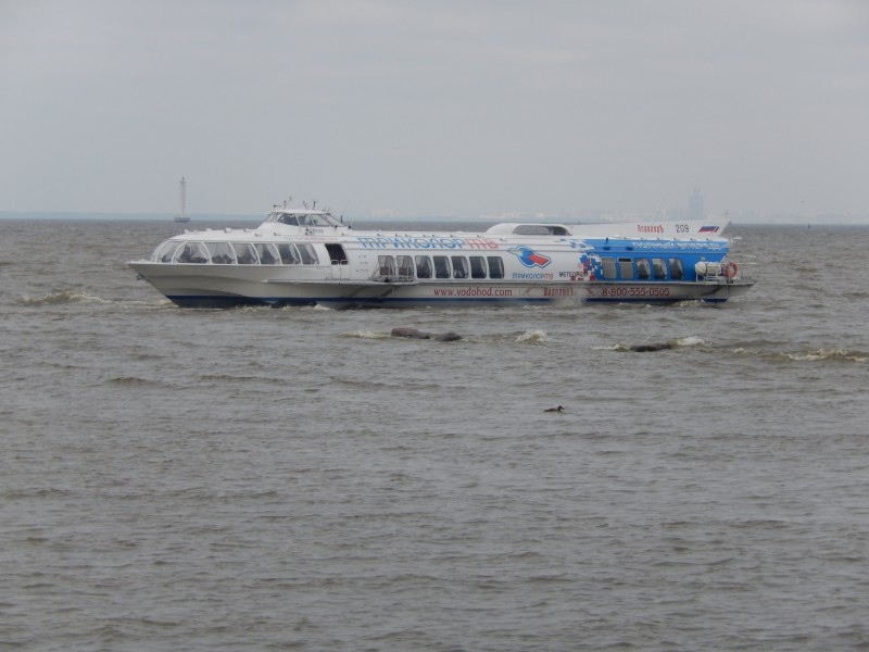 A hydrofoil like we used for cruising the Bay of Finland.