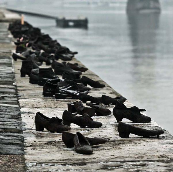 0816 Danube shoes