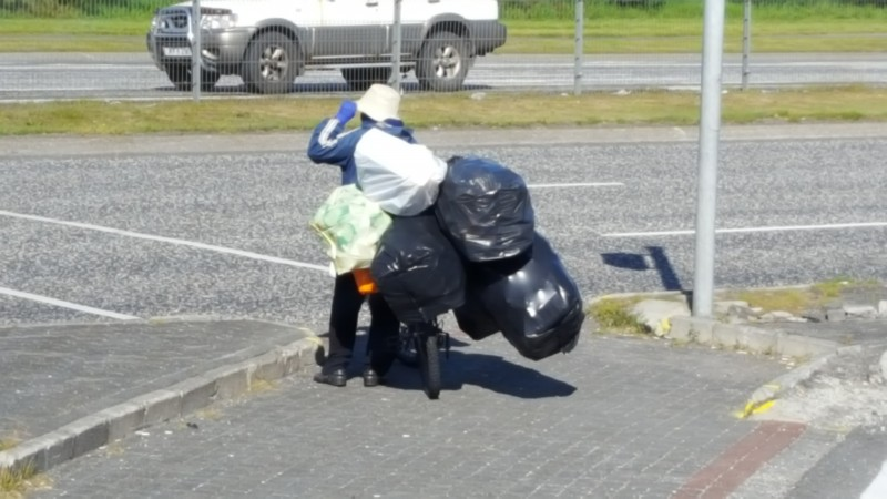 How many bags can a bag lady bike?