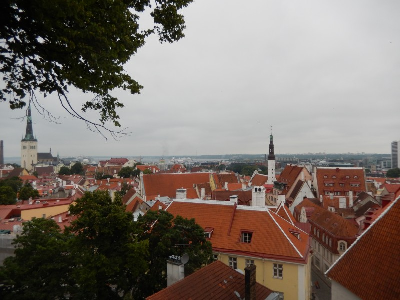 A view of low town from high town in Tallinn.