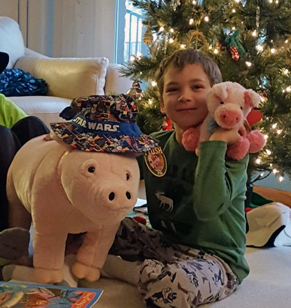 Teddy loves pigs and the big hit for him was two new pigs. Kari texted a photo of him sleeping with the big pig after her family went home. Notice the pig likes Teddy's new cap too.